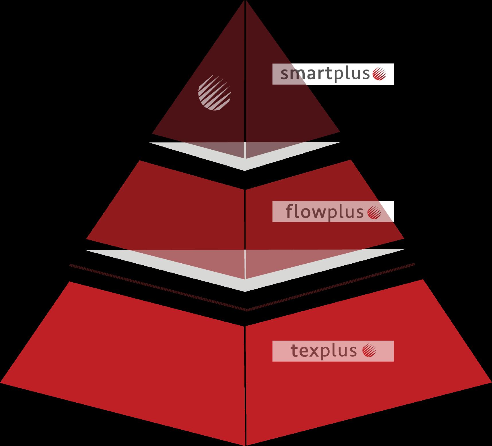 Piramide Ruta 4.0 Datamon Plus - Inicio